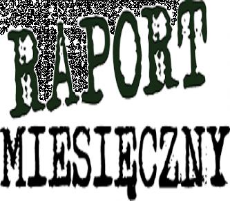 Kiedy należy wykonać raport miesięczny?
